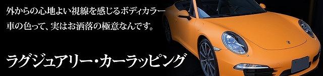 LAPPS_banner01